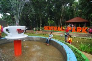Pengunjung menikmati berbagai objek wisata yang berada di komplek wisata alam Sentral Park, Kebun Balong Kecamatan Keling Kabupaten Jepara.